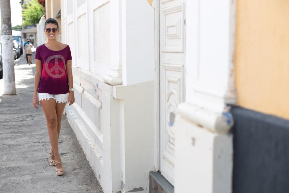 Blog da Luiza Sanches (15)