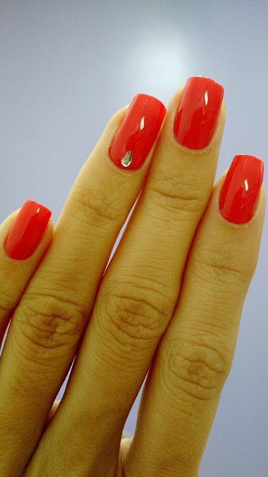 www.luizasanches.com.br.unhas5